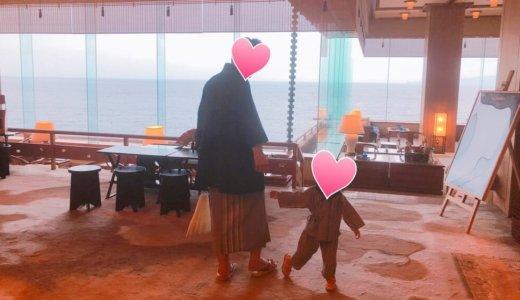 2歳8ヶ月のジーナ式スケジュール!昼寝なしの限界時間と伊豆旅行
