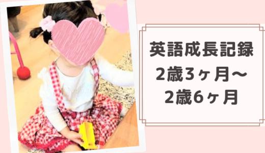 2歳3ヶ月~2歳6ヶ月の英語成長記録!センテンス(三語文)で話せるように