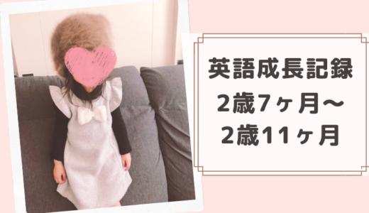 2歳7ヶ月~2歳11ヶ月の英語成長記録!英語の絵本を自分で読むように